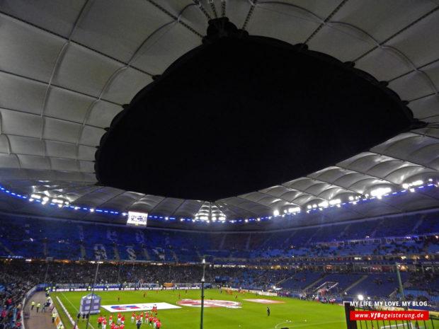 2014_12_16_Hamburg-VfB_01
