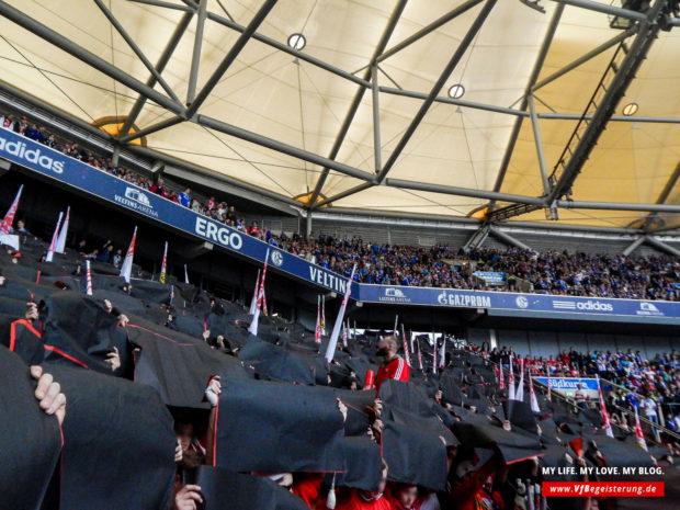 2015_05_02_Schalke-VfB_08