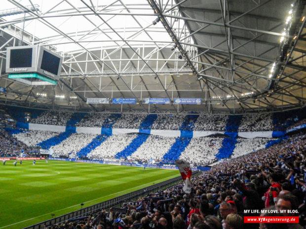 2015_05_02_Schalke-VfB_11