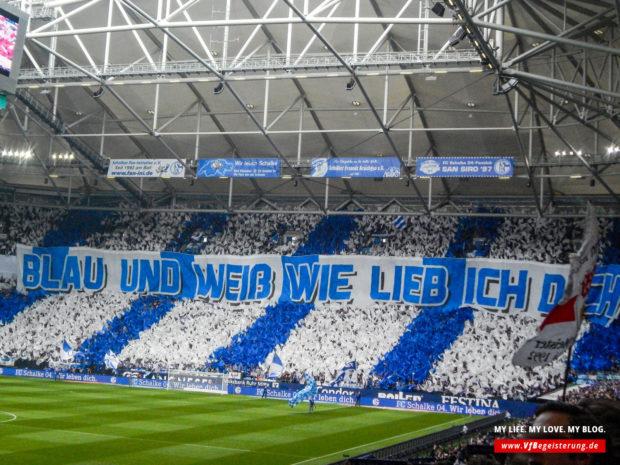 2015_05_02_Schalke-VfB_12