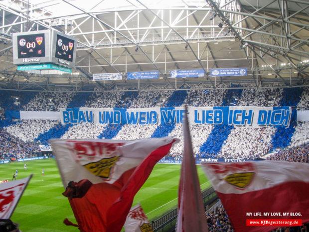 2015_05_02_Schalke-VfB_13