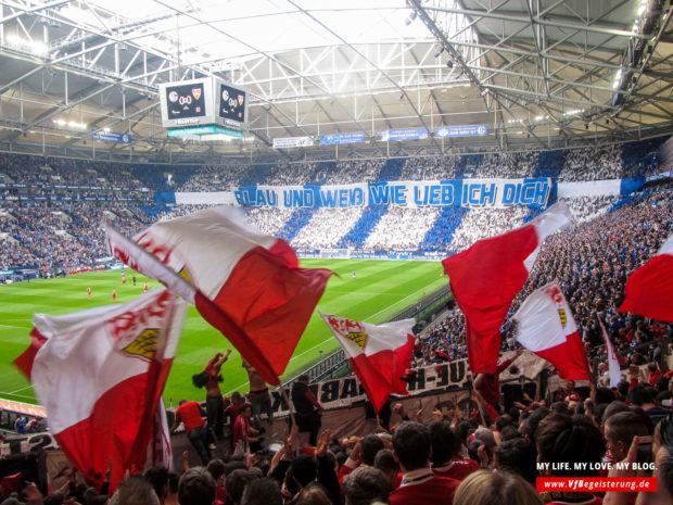 2015_05_02_Schalke-VfB_14