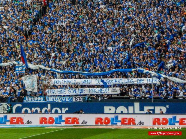 2015_05_02_Schalke-VfB_19