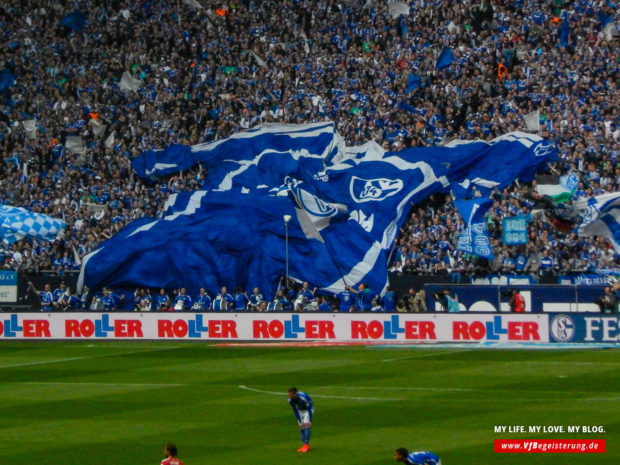 2015_05_02_Schalke-VfB_21