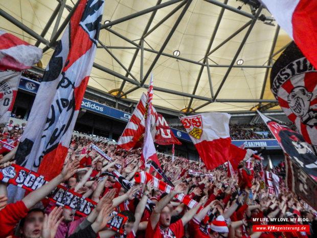 2015_05_02_Schalke-VfB_24