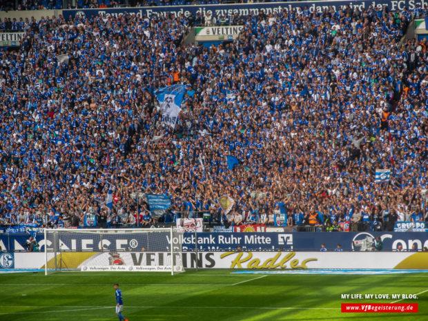 2015_05_02_Schalke-VfB_29