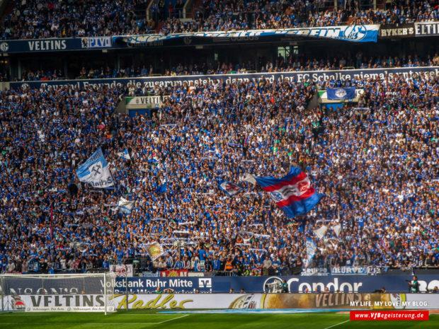 2015_05_02_Schalke-VfB_40