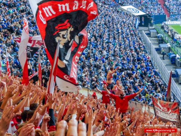 2015_05_02_Schalke-VfB_41