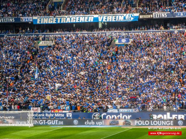 2015_05_02_Schalke-VfB_45
