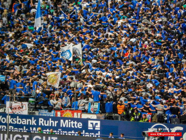 2015_05_02_Schalke-VfB_46