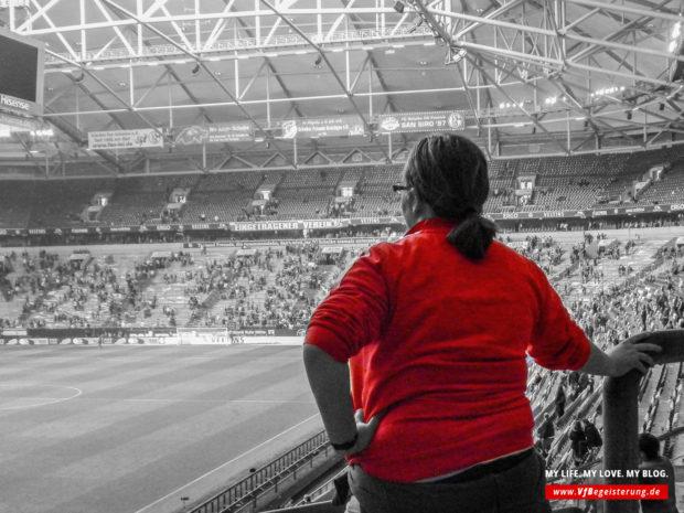 2015_05_02_Schalke-VfB_56