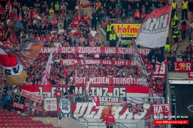 2015_05_09_VfB-Mainz_31