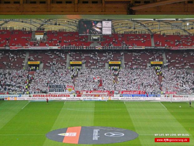 2015_05_16_VfB-Hamburg_11