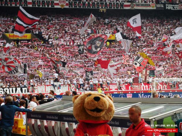 2015_05_16_VfB-Hamburg_20