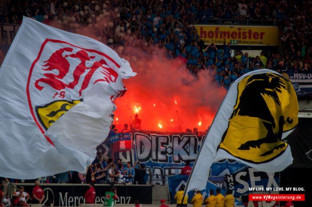 2015_05_16_VfB-Hamburg_30