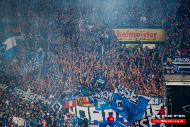 2015_05_16_VfB-Hamburg_35