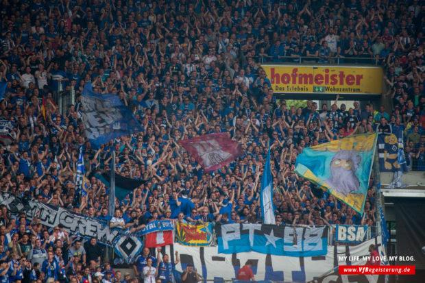 2015_05_16_VfB-Hamburg_41