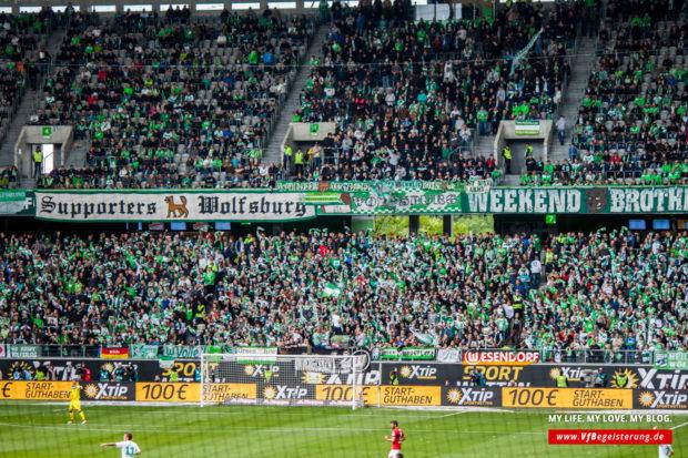 2016_05_14_Wolfsburg-VfB_23