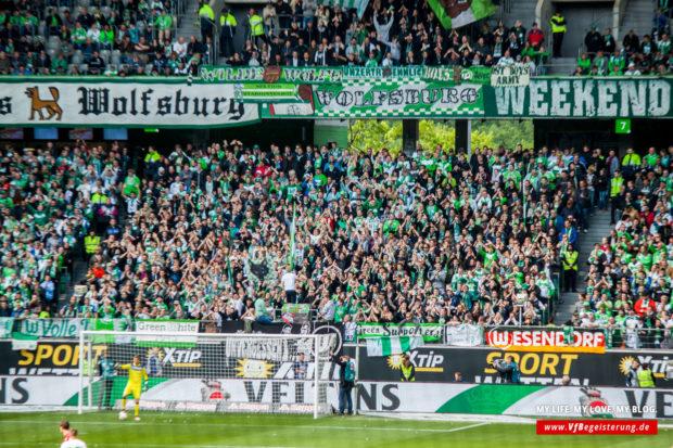 2016_05_14_Wolfsburg-VfB_31