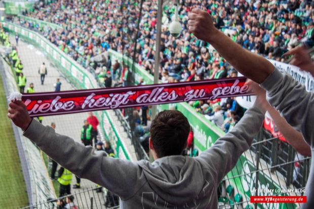 2016_05_14_Wolfsburg-VfB_37
